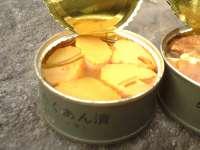 http://bosailabo.jp/report/food/jsdf05old.htm
