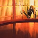 ふとみ銘泉万葉の湯、日帰り温泉とアカスリ体験をしてきました