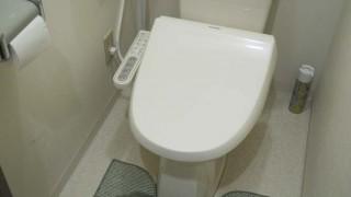 トイレは綺麗に!さぼったリングには手を全く汚さない使い捨てのトイレブラシがオススメ