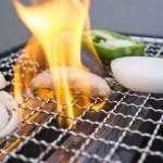 イワタニ炉ばた大将炙家Wを購入!自宅で炉端焼き・焼き肉をしたい人は必見