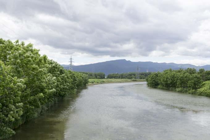 寄り道すると茨戸川