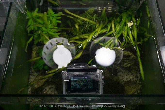 MUSON MC1Aを水中で使用してみた