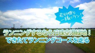 【最新】札幌市東区でランニング・ジョギングは丘珠空港緑地!車や自転車の心配なし